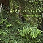 Forrest Vision by Nicholas Bridgman