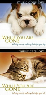 Pet Therapy Albums
